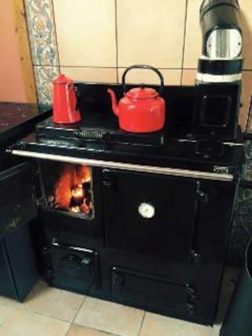 Multi-fuel Stove in Kitchen