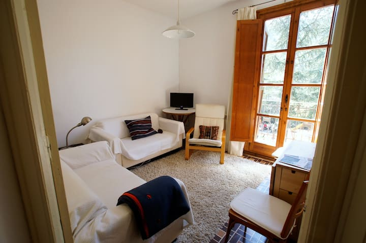 Apartment at the Pyrenees 5 guests Benasque Valley