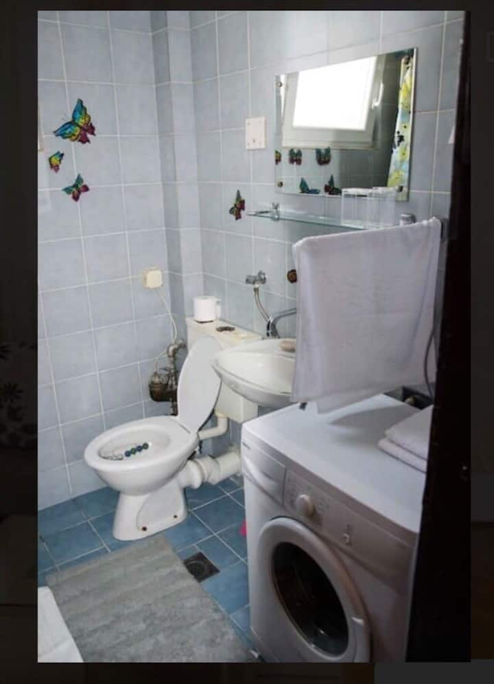 One bedroom apartment is located in the centar.