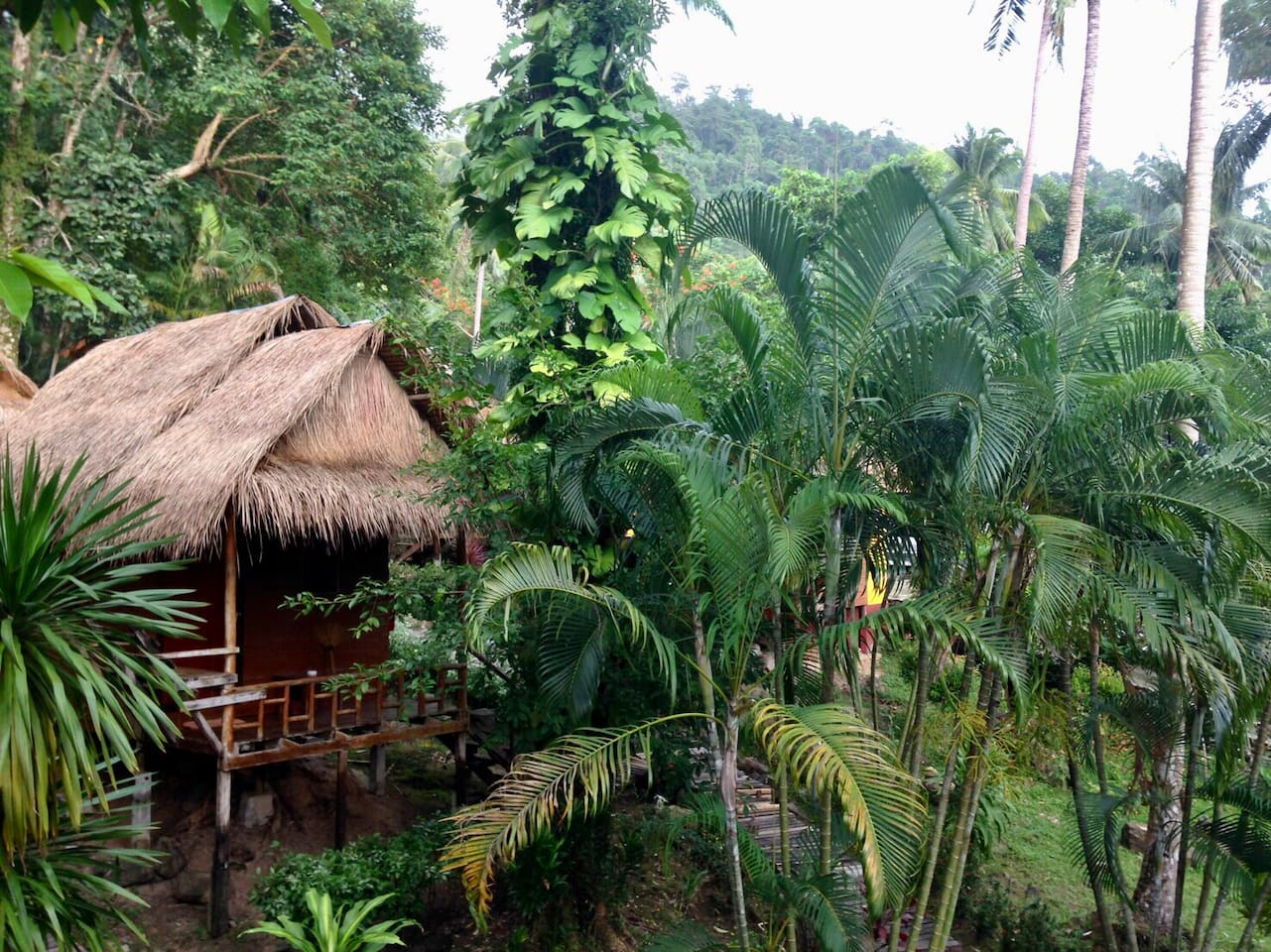 Bungalow in the Jungle