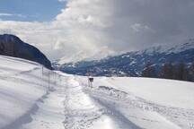 Schneeschuhwandern in Oberems / piste à raquettes à Oberems / snowshoe track in Oberems
