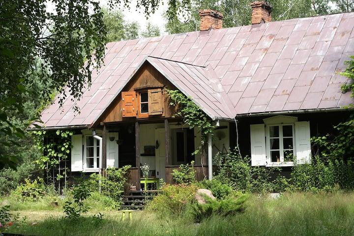 Dobry Dom w środku lasu