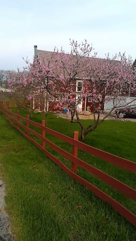Red Barn Lodge - Stevensville - Casa