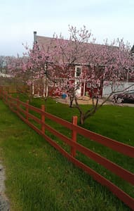 Red Barn Lodge - Stevensville - Hus