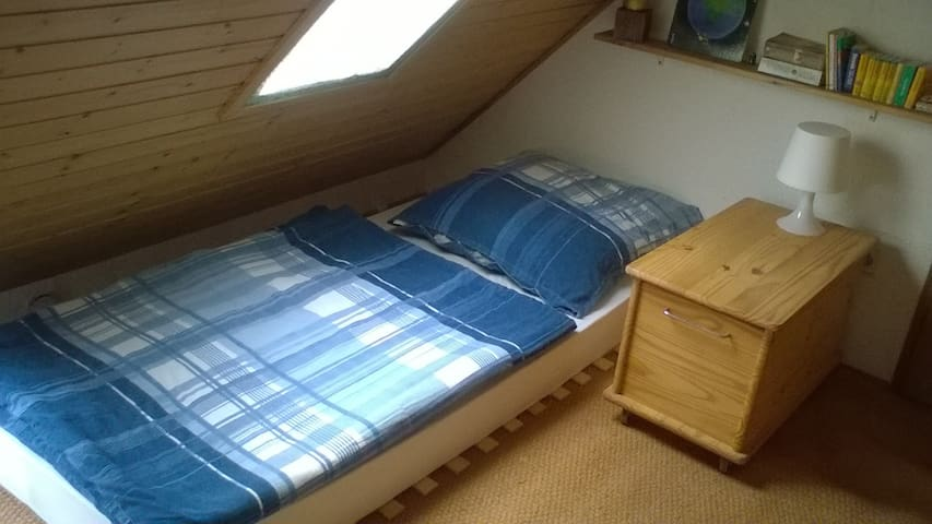 Single room in the city centre - Hanau - Leilighet