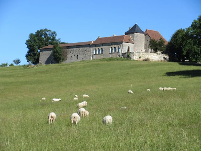 Chambres d'hôtes avec vue au sommet du Périgord