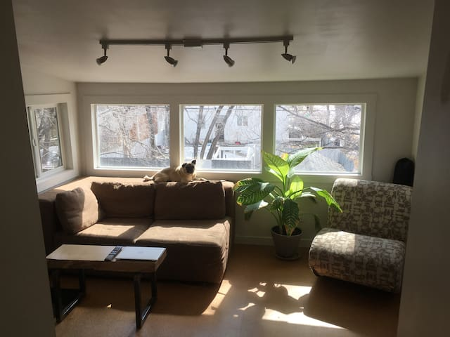 Corydon Village 1-BR - Winnipeg - Appartement