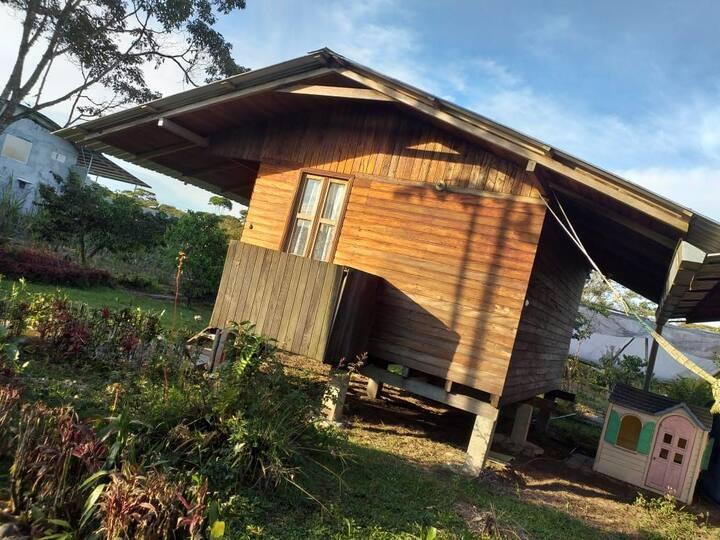 Ruta del cacao en Finca Saquifrancia
