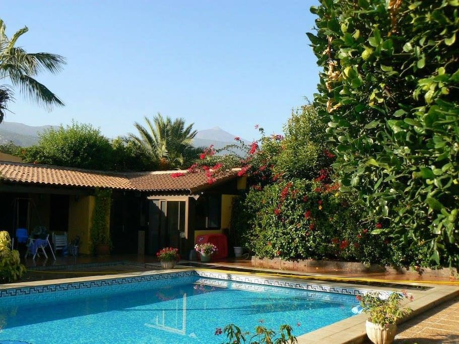 The Pool House - which has double bed, en-suite shower and separate toilet, access to fridge and cooking area BBQ etc. That is Mount Teide in the background. The entrance to the room opens up directly onto the pool area with spacious external seating under cover.