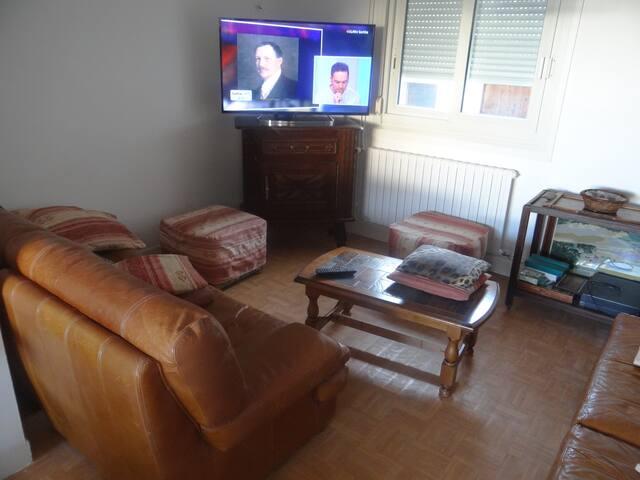 une partie du coin salon de la spacieuse pièce à vivre
