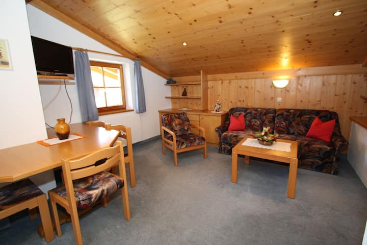Cozy Studio Apartment in Mittersill near Ski Bus