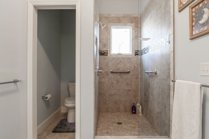 Big roomy shower and the toilet.