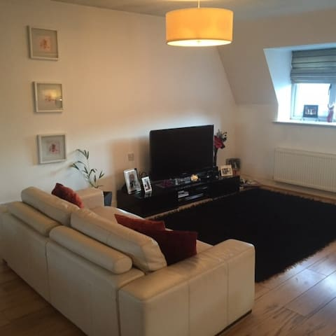 Apartment with Roof Top Garden - Malahide