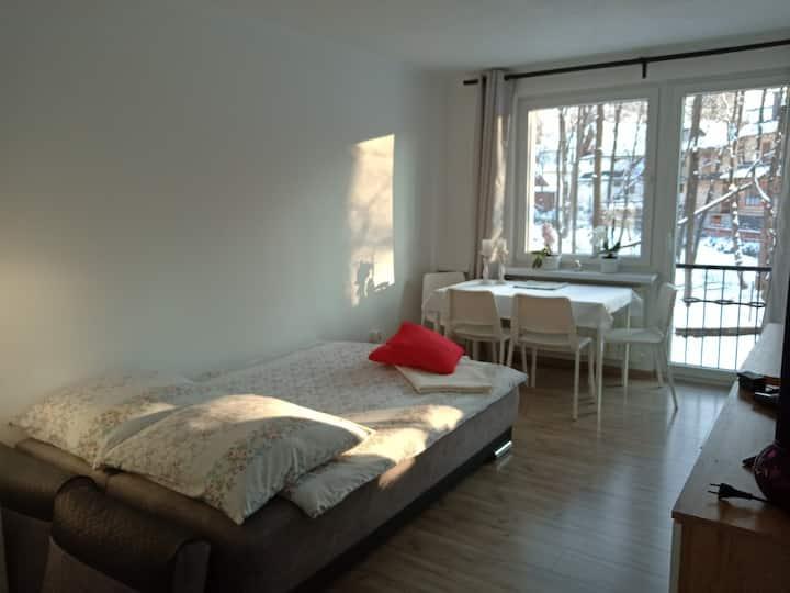 Nowy i przytulny apartament w centrum Zakopanego.