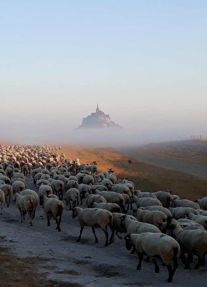 L'Hirondelle, au pied du Mont St-Michel