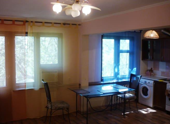 Уютная студия на Савушкина посуточно - Astrakhan' - Servicelägenhet
