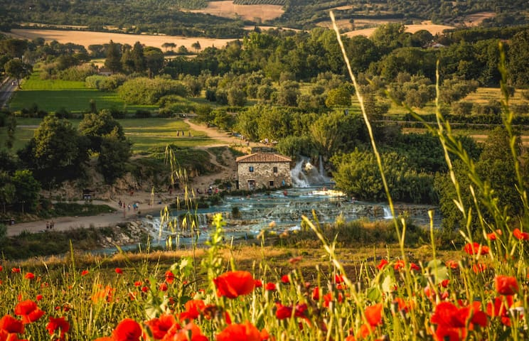 Saturnia, Relax and chirping sound