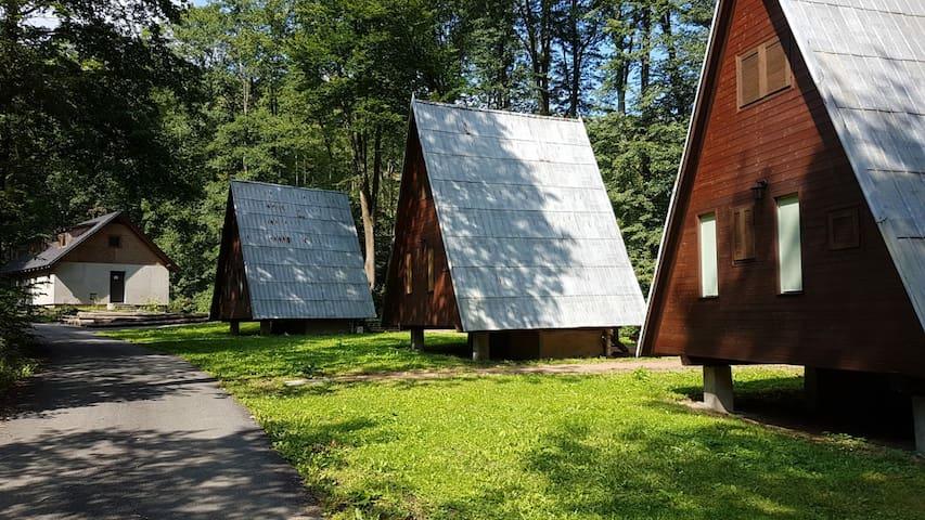 Chaty na samote v lese Barborka 3