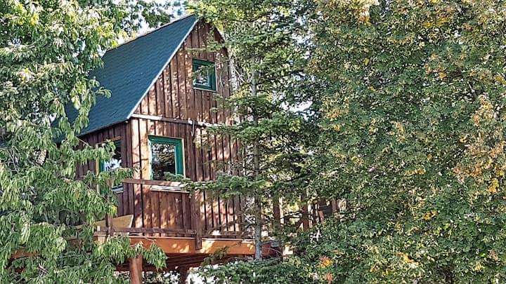 einzigartiges Baumhaus