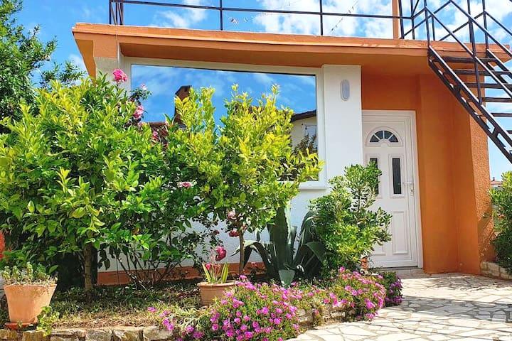 Vita Studio with Garden & Private Parking