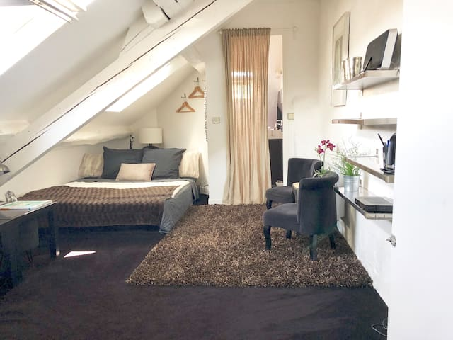 Cozy Studio in the very heart of fontainebleau
