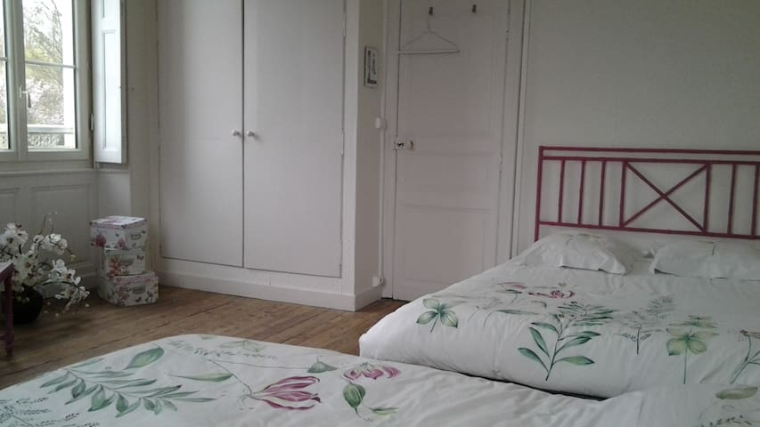 Large room in house with 2 double beds - La Flèche - Дом