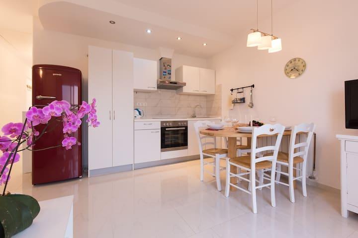 Elegant Curicta apartment