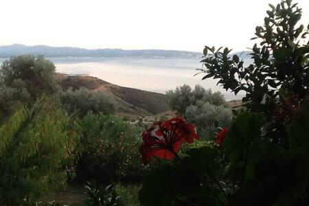 coastal retreat in crete - Agios Georgios - Appartement