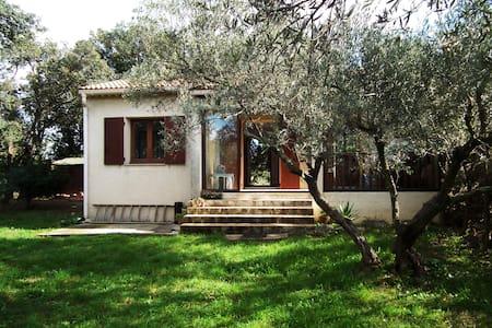 villa sur grand terrain proche Uzes - Saint-Siffret
