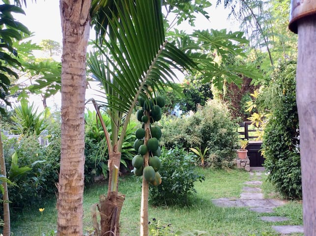 La Roofa - quaint with a relaxing private garden.