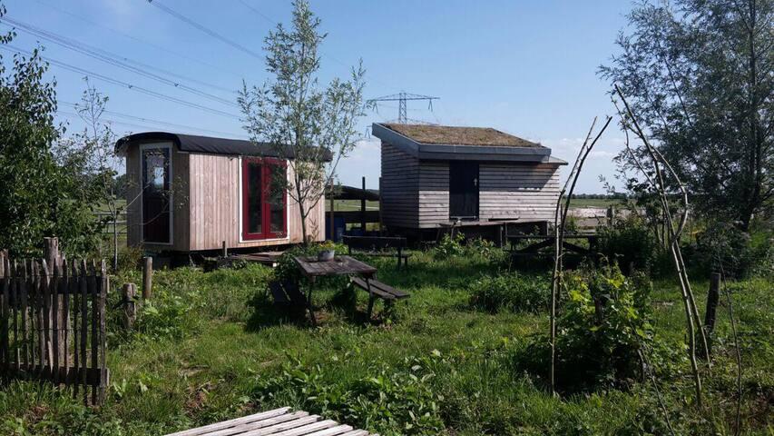 Tiny house on organic farm with vegetable garden