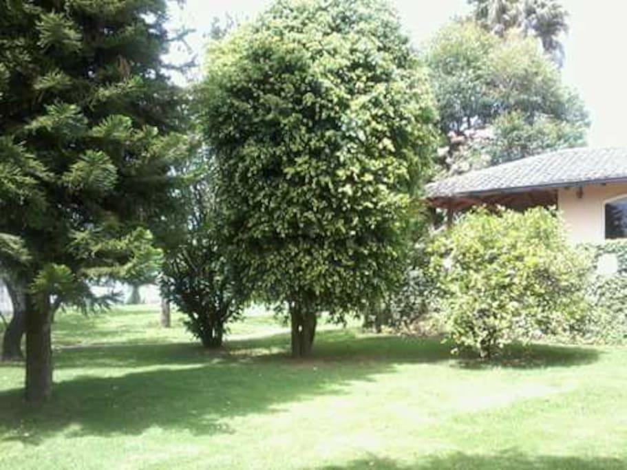 patios disponibles con área de fogata