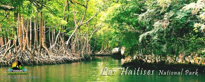 Apartahotel close to Los Haitises National Park