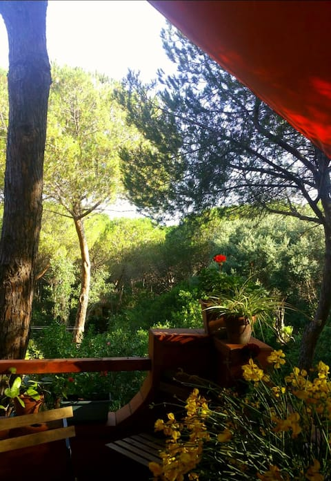 Indipendent villa Is Arenas village, pinewood&sea
