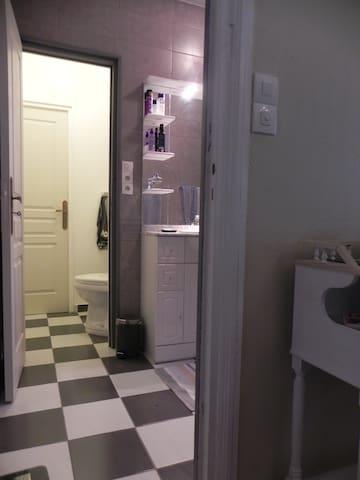 chambre et salle de bains communiquant directement avec les toilettes.