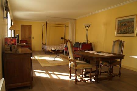 Appartement d'hote authentique proche Paris - Épinay-sur-Orge - Flat