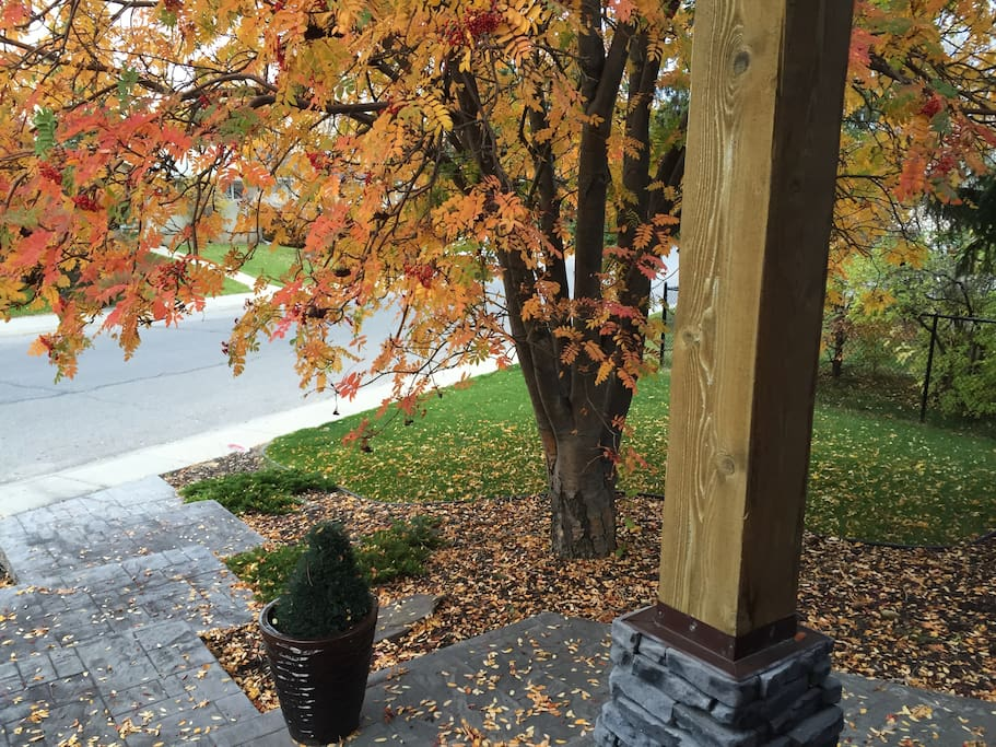 Our beautiful fall - front street view