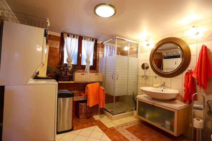 Bathroom with shower on the ground floor