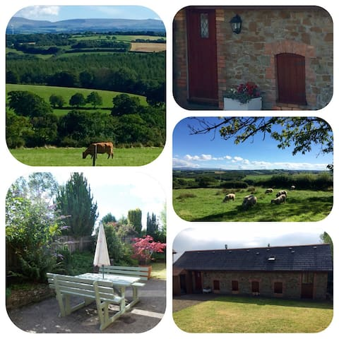 Pigaway; cosy & quaint barn conversion - Petrockstow - Bangalô