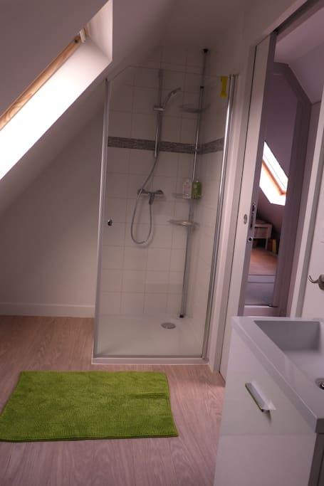 une petite SDB très claire avec douche, lavabo et toilettes (broyeur)