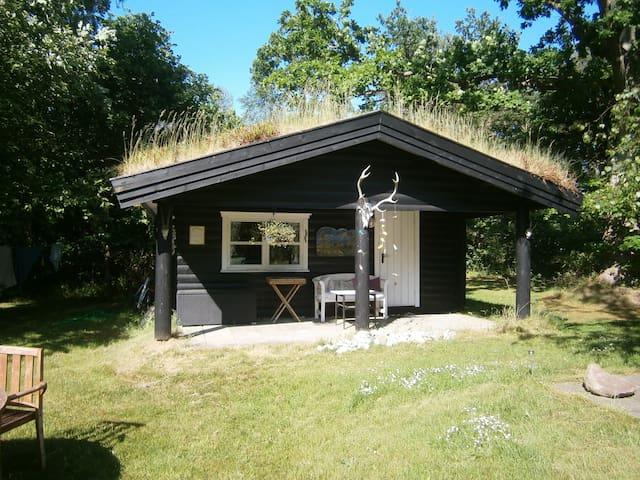 Bjælkehytte i naturskønt område i Rørvig
