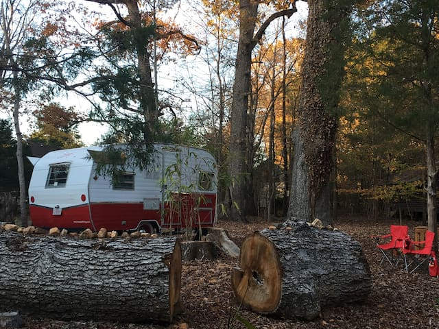 Retro Camper in the Woods