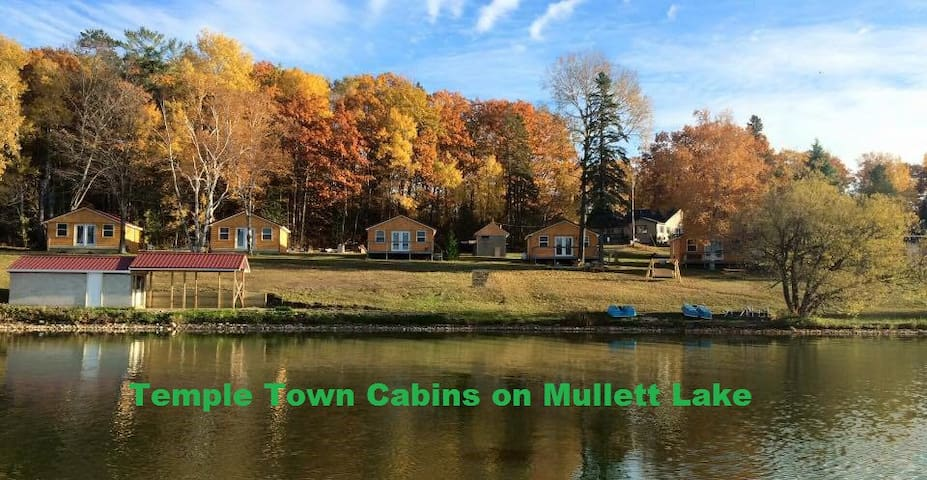 Temple Town Cabins on Mullett Lake - Indian River - Cabin