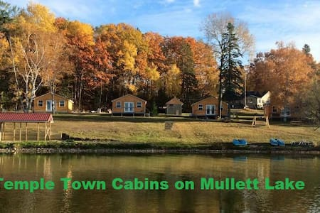 Temple Town Cabins on Mullett Lake - Indian River