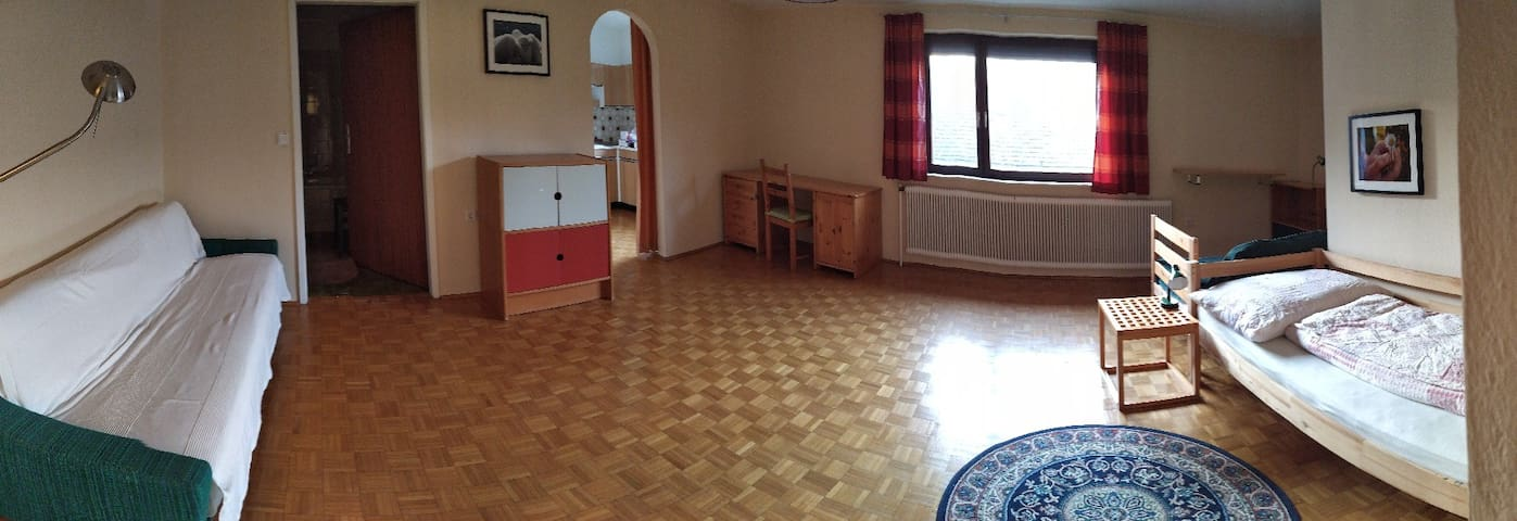 Helles, geräumiges Appartement im 1. Stock