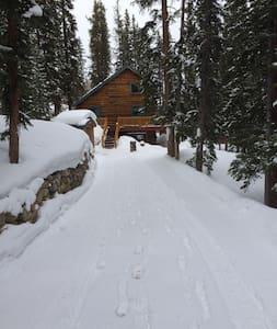 Rustic Cozy Mountain Near Breck - Alma - Dom