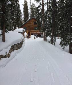Rustic Cozy Mountain Near Breck - Alma