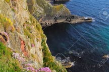 The beautiful cliffs of the Old Head of Kinsale are 10 mins away.
