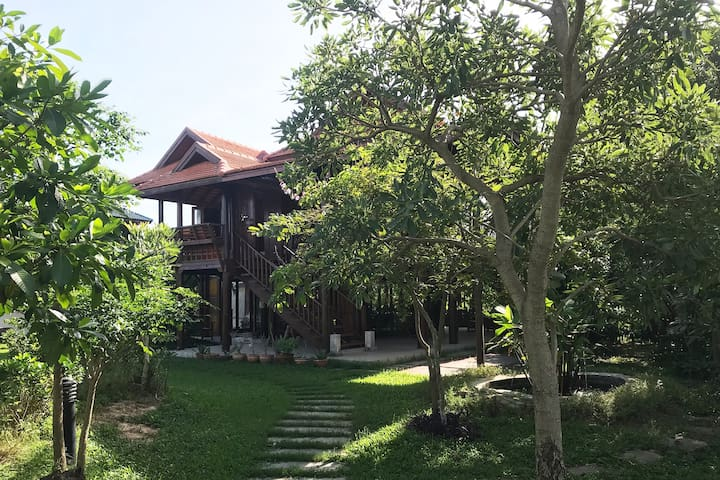 Villa Thaiger: The Thai House at Rice fields