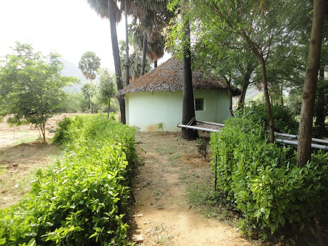 First Earthbag cottage in India 4-5 people. Bath attached.